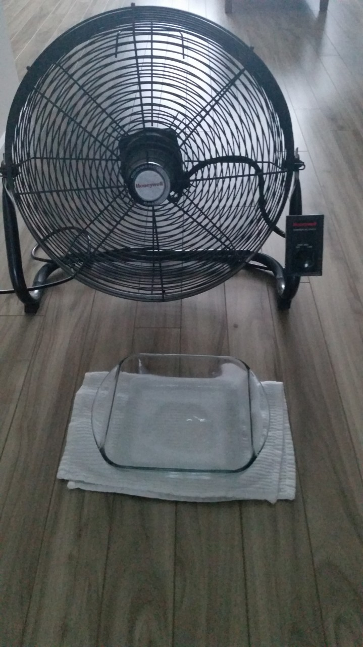 How-to: Keep your housecool