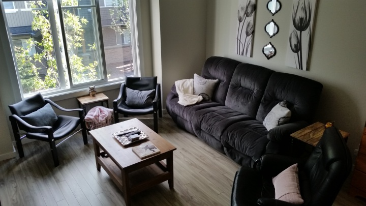 How I Spent $660 to Furnish and Decorate my Living Room